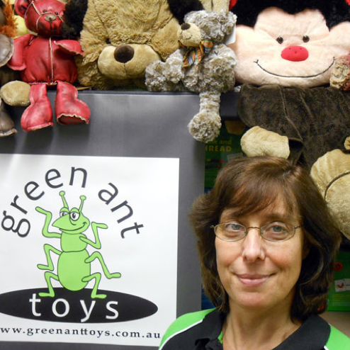 Green Ant Toys: Selling Online is Far from Child's Play