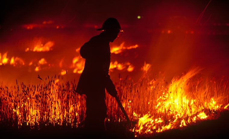 Ways Retailers Can Help Those Affected by the Bushfires